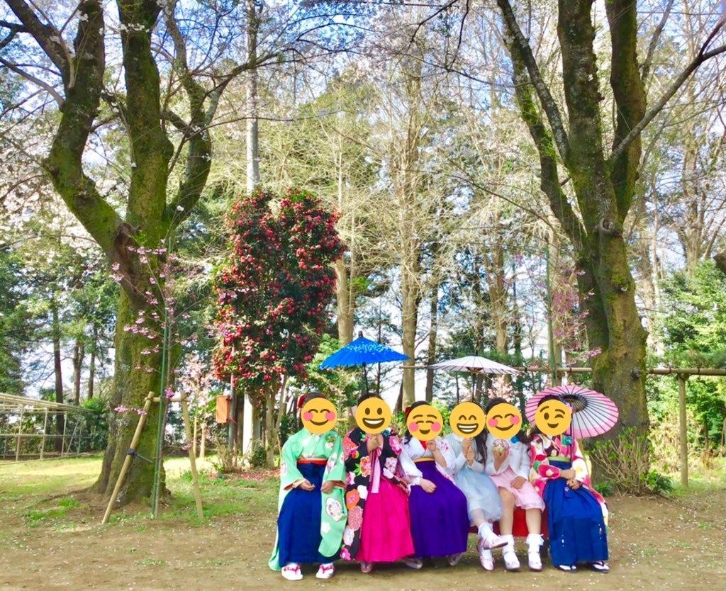 大宝保育園の卒業生達が境内の桜の木の下で記念撮影しました。